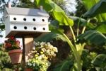 White birdhouse in garden